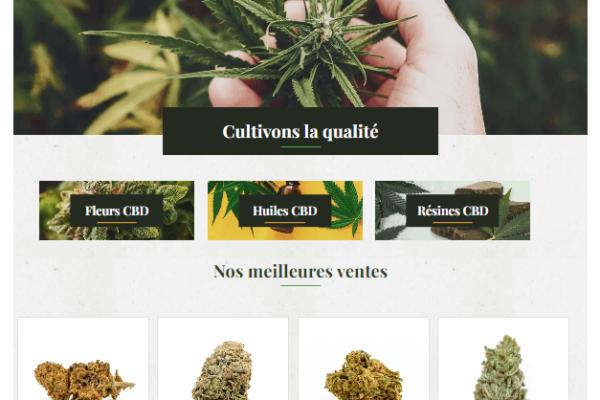 la-ferme-du-cbd-site-page-accueil