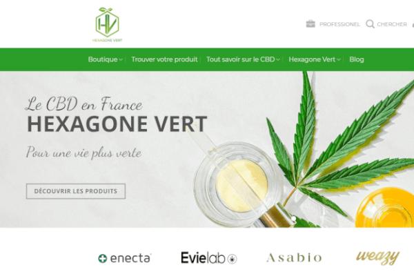 hexagone-vert-page-accueil