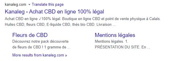 resultat-google-kanaleg