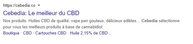 cebedia-resultat-google