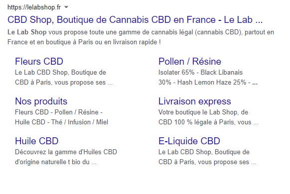 resultat-google-le-lab-shop